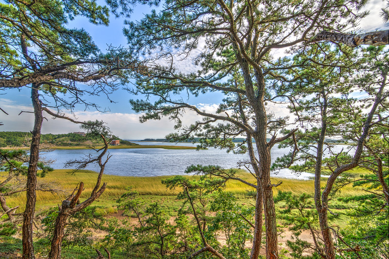 Wellfleet Bay, looking southeast from the Great Island Trail