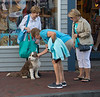 Carly was a big hit in dog-friendly P-town.
