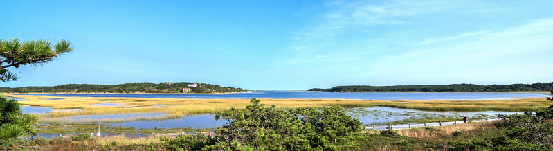 """An arm of Wellfleet Harbor, looking southeast from the north end of """"The Gut"""""""