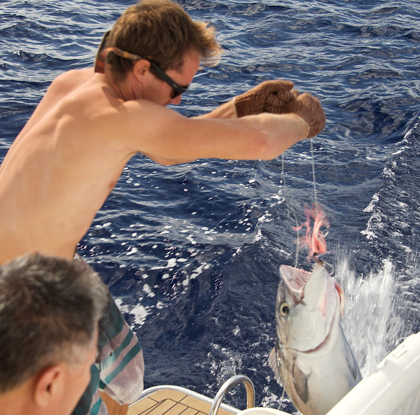 Sylvain landing a 30-pound tuna, a portion of which appeared on the menu that evening as extremely fresh sashimi!