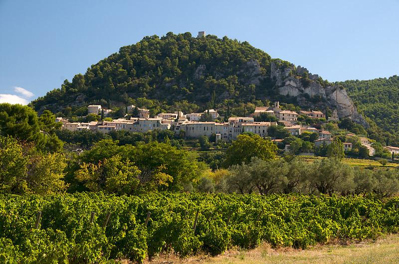 Vineyards before Séguret