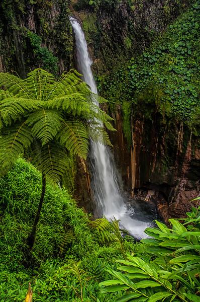 WAb376 Catarata Del Toro Waterfall, Sarchi, Costa Rica
