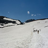 WAa613 - Hikers on Snowfield, Logan Pass, Glacier NP, Montana