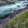 WAa841 - McDonald Creek, Glacier NP, Montana