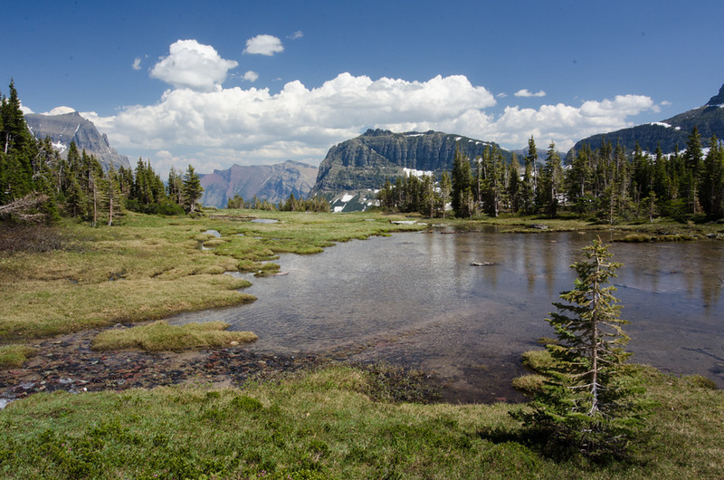 WAa619 - Alpine Lake, Logan Pass, Glacier NP, Montana