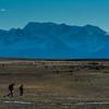 WAb1662 Trekkers, La Anita Valley, El Calafate, Patagonia, Argentina