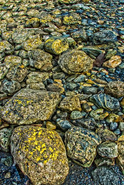 WAb613 Beach Rocks & Crustose sp. Lichens, Almirantazgo Bay, Patagonia, Chile