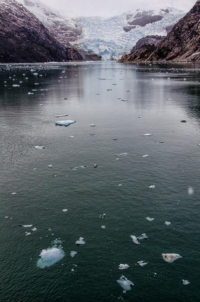 WAb1542 Marinelli Glacier, Alberto De Agostini NP, Ainsworth Bay, Patagonia, Chile