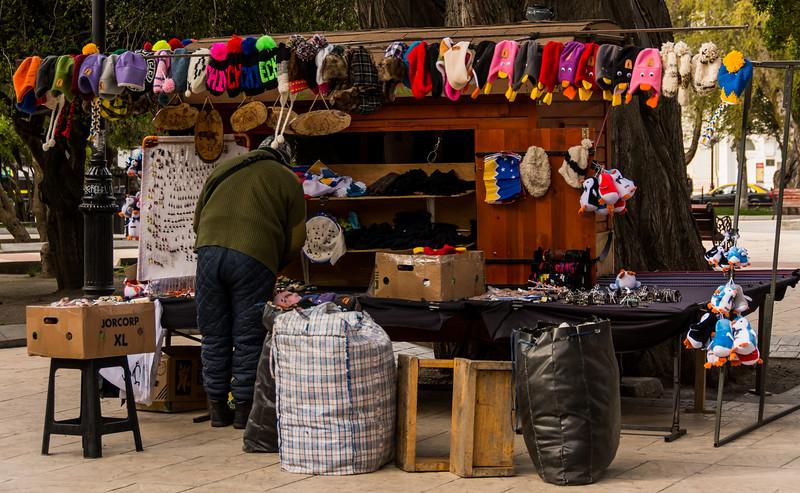 WBb1689 Street Vendor, Punta Arenas, Chile