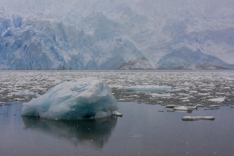 WAb746 Icebergs & Glacier, Almirantazgo Bay, Darwin Range, Patagonia, Chile