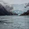 WAb1498 Marinelli Glacier, Alberto De Agostini NP, Ainsworth Bay, Patagonia, Chile