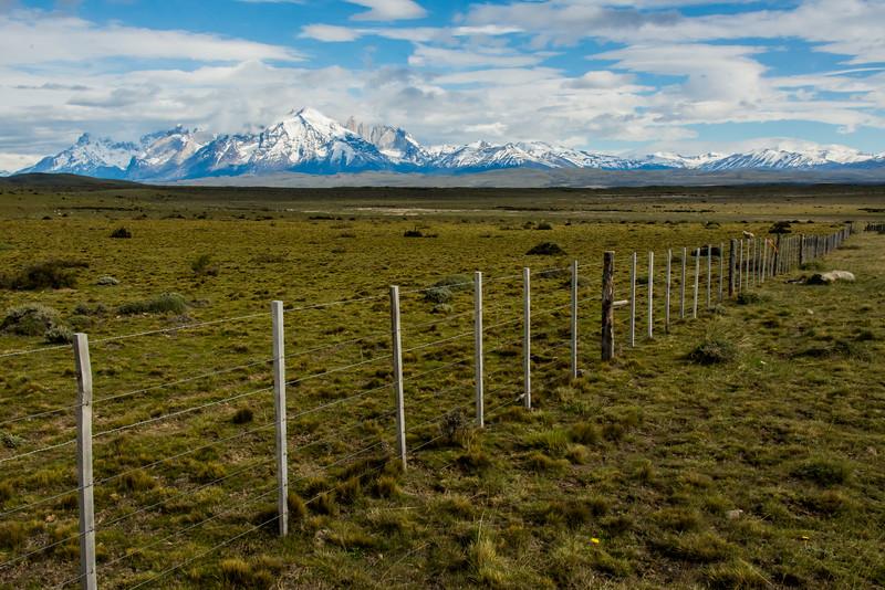WAb2083 Patagonian Steppe, Cerro Castillo, Chile