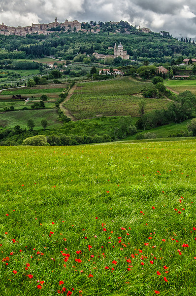 WAb187 - Poppy Field and Montepulciano, Italy