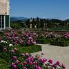 WBb398 - Boboli Gardens, Florence, Italy