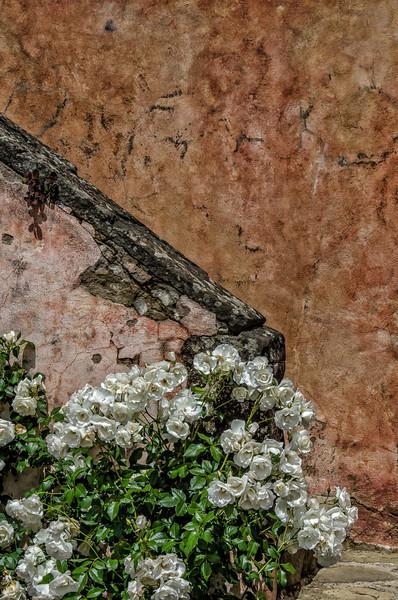WBb1183 - Villa Vignamaggio, Greve in Chianti, Italy