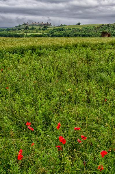 WBb1087 - Monteriggioni, Tuscany, Italy
