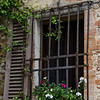 WBb501 - Window, Castellina in Chianti, Italy
