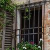 WBb501 - Window, Castellina in Chianti, Italy