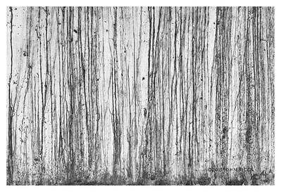 Taos Abstract 1