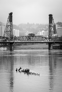 The Willamette in Winter