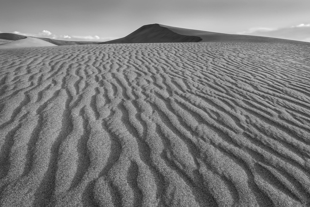 Sand dunes at Bruneau Dunes State Park, Idaho