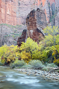 """The Temple in Fall""  Fall color in the area of the Temple of Sinawava along the Virgin River, Zion National Park, Utah, USA."