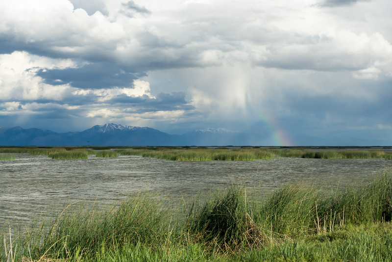 A rainbow forms among storm clouds. Taken at Bear River Migratory Bird Refuge, Utah, USA.