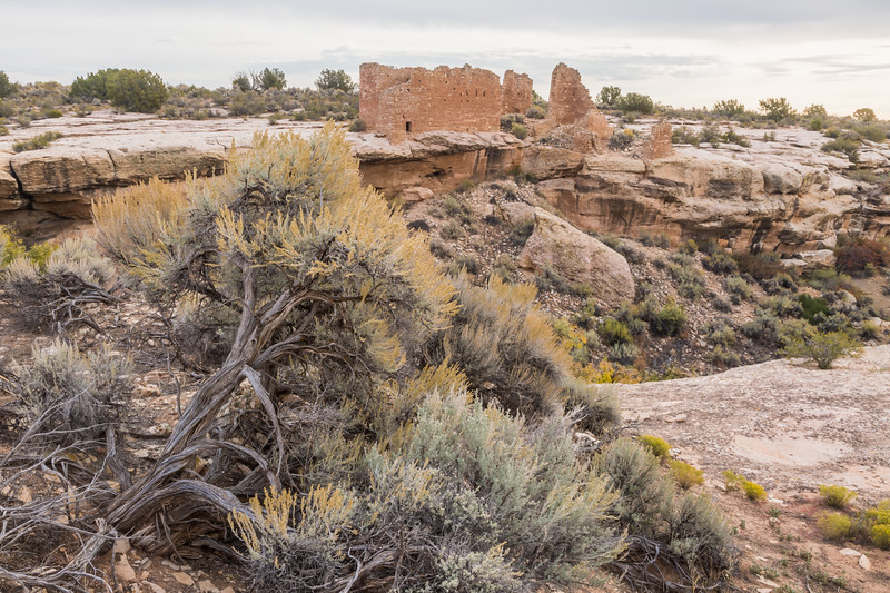 The Hovenweep Castle Group lies across the canyon. Taken on the Little Ruin Trail in Hovenweep National Monument, Utah, USA.