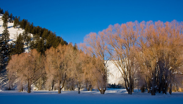 Chateau Le Bois de Renard