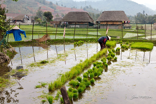 Vietnam Scarecrow