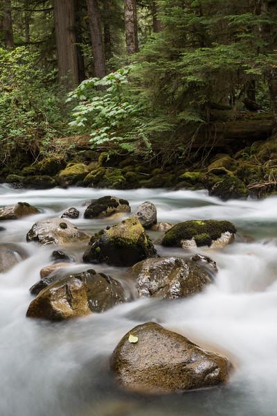 Cascades on the Cascade