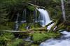 A waterfall on Big Spring Creek. Taken in the Gifford Pinchot National Forest, Washington, USA.