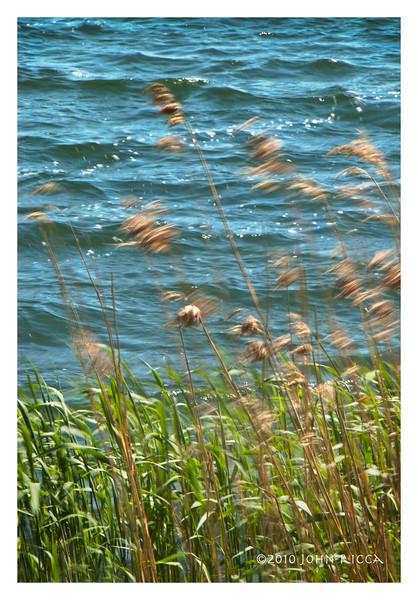 Windy Day - Oaxen Sweden