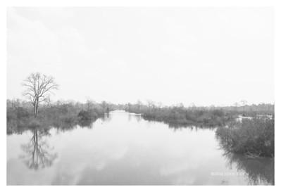 River Scene, Siem Reap, Cambodia