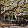 WBa92 - Carriage Tour, Charleston, SC