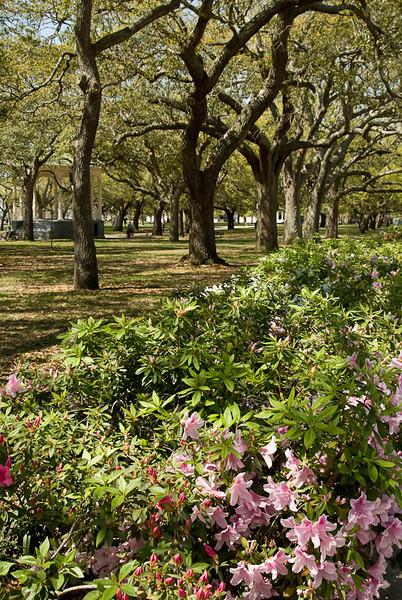 WBa91 - Battery Park, Charleston, SC