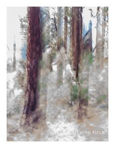 Yosemite Impression 20