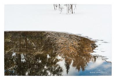 Yosemite Reflection 1