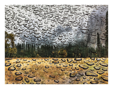 Heavy Rain In Yosemite