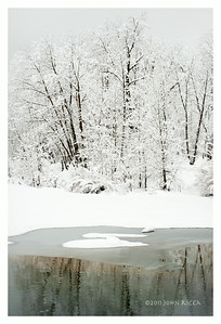 Winter Reflections 2