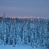 Morgenlicht streift die Baumwipfel - Lappland, Schweden<br /> <br /> Morning light touches the treetops - Lapland, Sweden