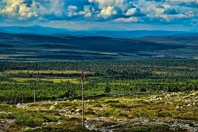 Unterwegs im Sånfjället Nationalpark - Härjedalen, Schweden  On the way in Sånfjället Nationalpark - Härjedalen, Sweden  mehr dazu im Blog: Reiseziele in Schweden