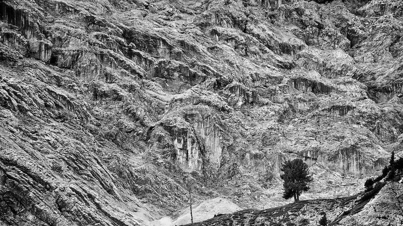 """Einsamer Baum - Dolomiten, Südtirol, Italien<br /><br />  Lonely Tree - Dolomites, South Tyrol, Italy<br /><br /> - mehr dazu im Blog: <br /><a href=""""http://arnohelfer.wordpress.com/2013/02/24/dolomiten-in-schwarzweis/"""">Dolomiten in Schwarzweiß</a><br />"""