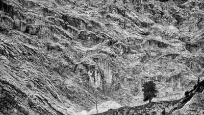 Einsamer Baum - Dolomiten, Südtirol, Italien  Lonely Tree - Dolomites, South Tyrol, Italy - mehr dazu im Blog: Dolomiten in Schwarzweiß