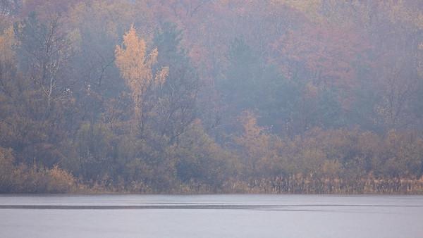 Herbstliches Ufer im Regen - Fermasee, Rheinstetten, Deutschland  Autumn shore in the rain - Fermasee, Rheinstetten, Germany  - mehr dazu im Blog: Fotografieren im Regen