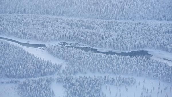 Schneebedeckte Seen und Wälder - Lappland, Schweden  Snow-covered lakes and forests - Lapland, Sweden  - mehr dazu im Blog: Winter in Lappland