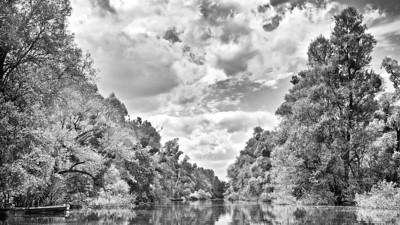 Hochwasser am Altrhein - Rheinauen, mittlerer Oberrhein bei Au am Rhein, Deutschland Flood at the Old Rhine - Germany - mehr dazu im Blog: Altrhein in Schwarzweiß