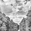 """Hochwasser am Altrhein - Rheinauen, mittlerer Oberrhein bei Au am Rhein, Deutschland<br /> Flood at the Old Rhine - Germany<br /> - mehr dazu im Blog: <a href=""""http://arnohelfer.wordpress.com/2012/08/25/altrhein-in-schwarzweis/"""">Altrhein in Schwarzweiß</a>"""