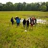 Exkursion Urzeitkrebse in den Feuchtwiesen der Rheinauen