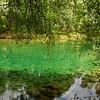 """Glasklares Wasser am Altrhein - Rheinauen am mittleren Oberrhein, Au am Rhein, Deutschland<br /> Crystal clear water on the Old Rhine - Au am Rhein, Germany <br /><br /> - mehr dazu im Blog: <br /><a href=""""http://arnohelfer.wordpress.com/2012/11/30/rheinauen-kalender-2013-2/"""">Rheinauen Kalender 2013</a><br />"""